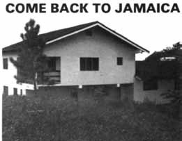 Come Back To Jamaica Advert